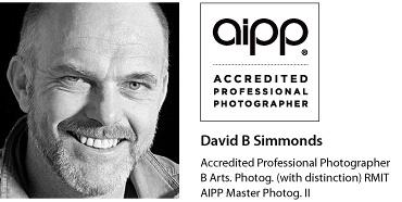 David-Headshot-AIPPlogo