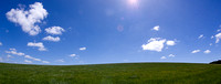 Green grasses and blue sky
