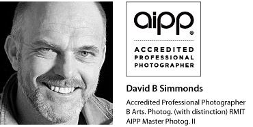 David-Headshot-AIPPlogo